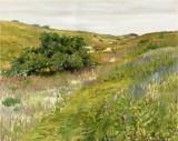 Landscape, Shinnecock Hills