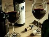 Wine Culture 033