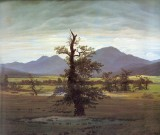 Landscape with Solitary Tree.jpg