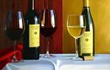 Wine Culture 048