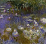 Yellow and Lilac Water Lilies