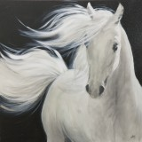 The White Stallion II: 40 x 40 inches