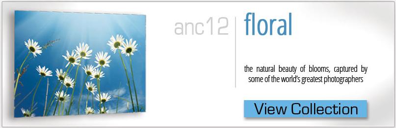 fine-floral.jpg