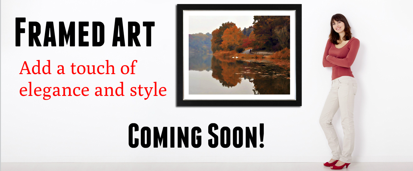 framed-art-banner-2.jpg